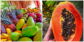 caribbean fruits